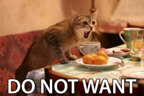 Lolcat - Do not want