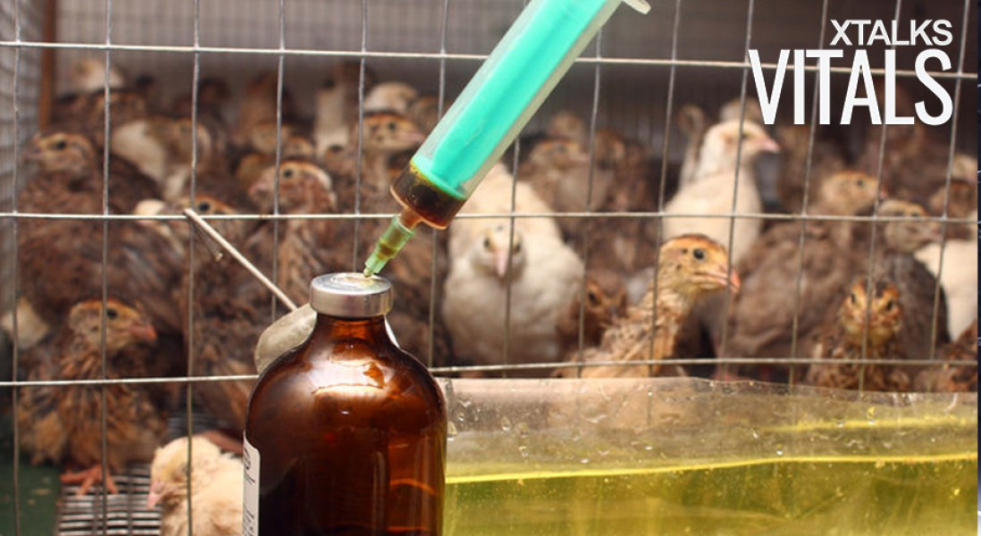 FDA To Track Sales Of Antibiotics To Livestock Farmers