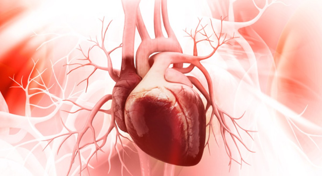Some Immuno-Oncology Drugs Carry Risk of Rare Heart Damage