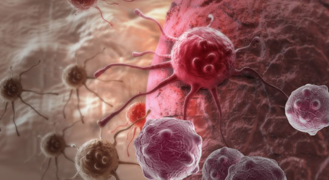Tumor Growth Linked To Cancer's Manipulation Of Surrounding Cells