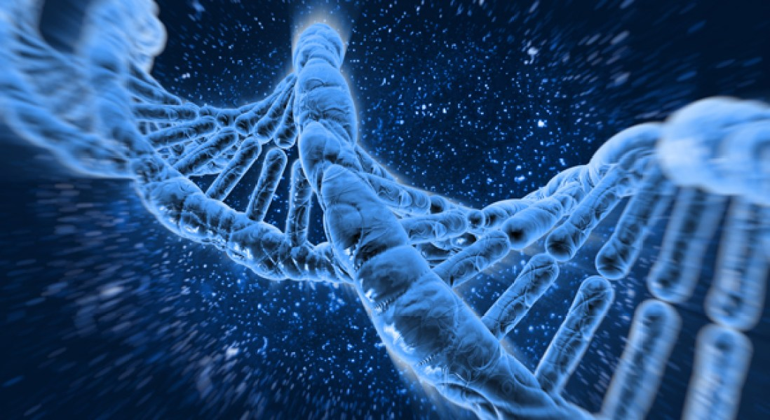 Your Immune System is Written in Your Genes