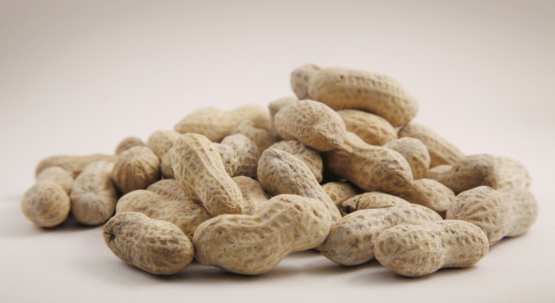 Peanuts May Improve Arterial Health, Reduce the Risk of Cardiovascular Disease