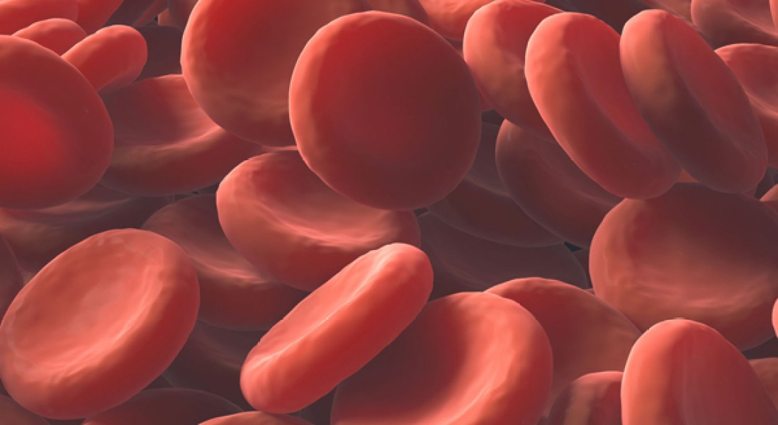 Effectiveness of Cancer Immunotherapy Could Be Improved by Blocking Platelet Production