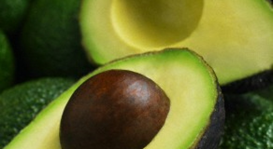 New Avocado Light Contains 30% Less Fat Than Original