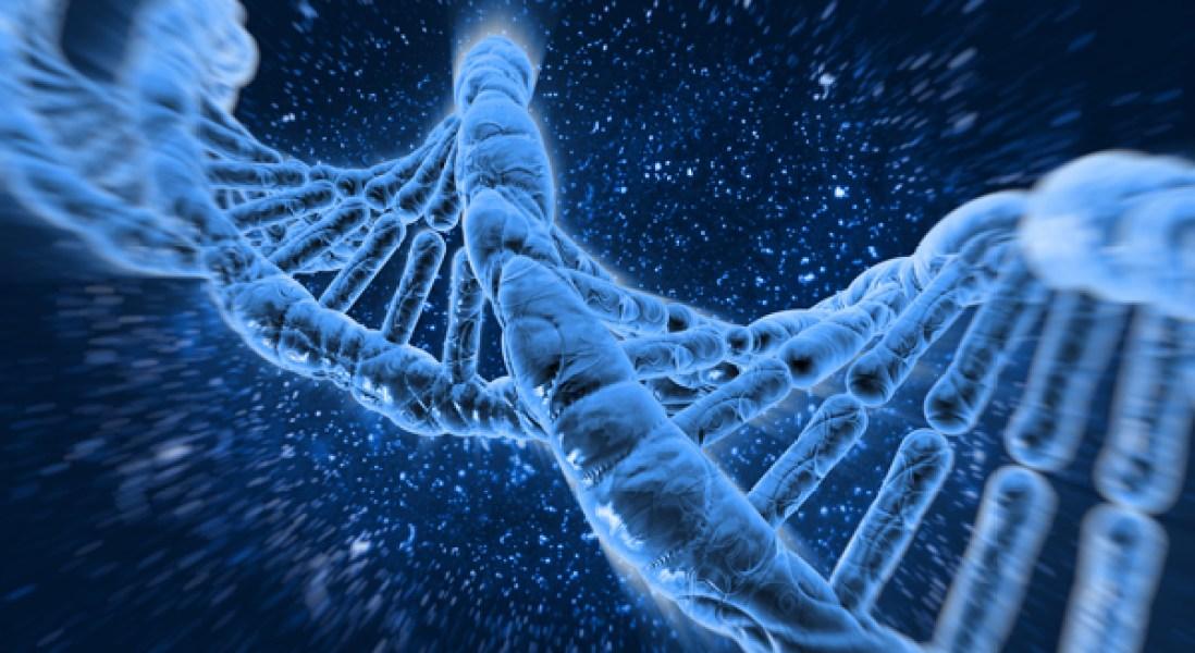 Eliminating the Viral Vector Makes CRISPR Gene Editing More Versatile