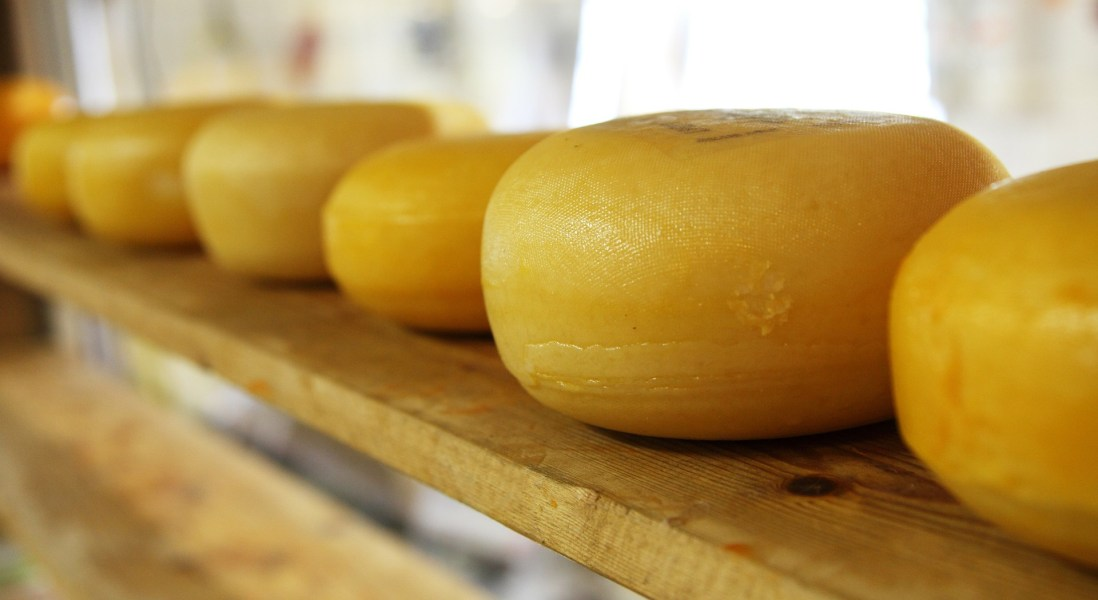 Dairy Economy Plunges as Industry Struggles to Sell Billion-Pound Cheese Surplus