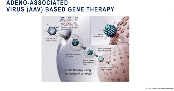 Adeno-associated virus based gene therapy from Medpace slidedeck