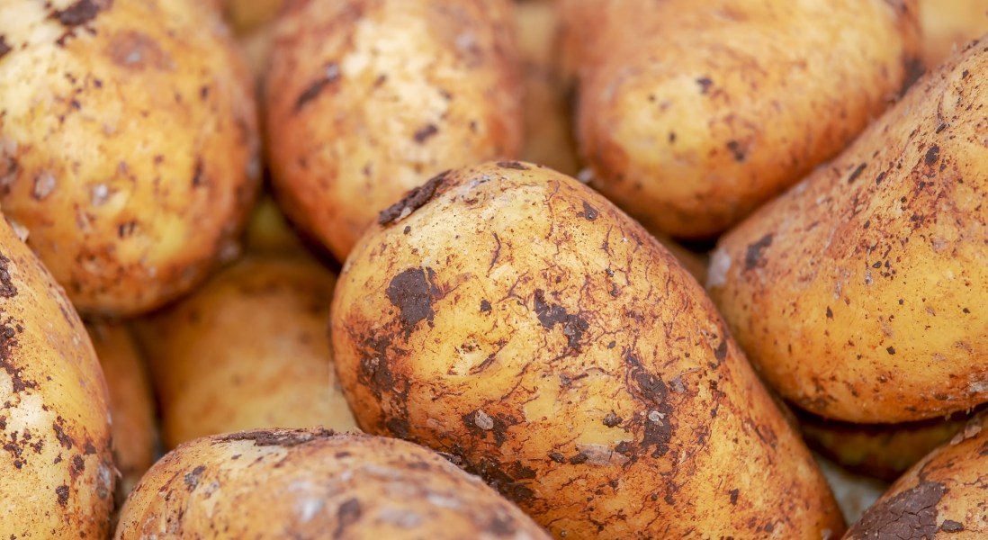 Nestlé & Carrefour Use IBM Blockchain To Track Mashed Potatoes