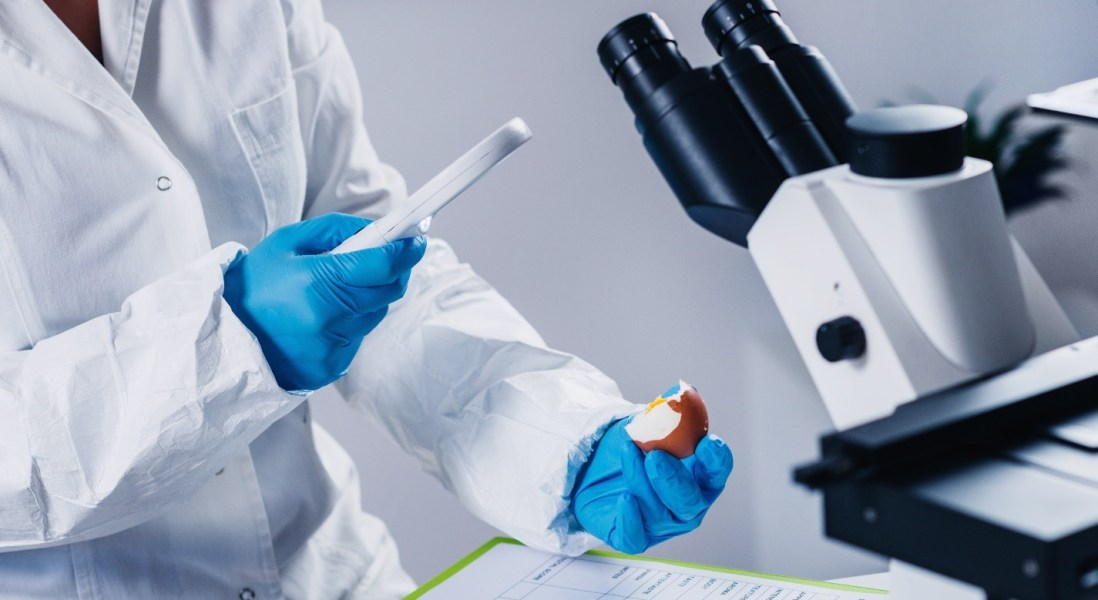 Smarter Food Safety Promised by FDA's New Blueprint