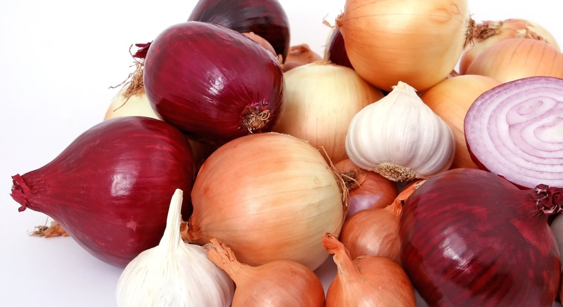 Thomson International Recalls Onions Due to Risk of Salmonella