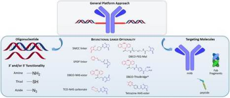 A general approach to oligonucleotide conjugation