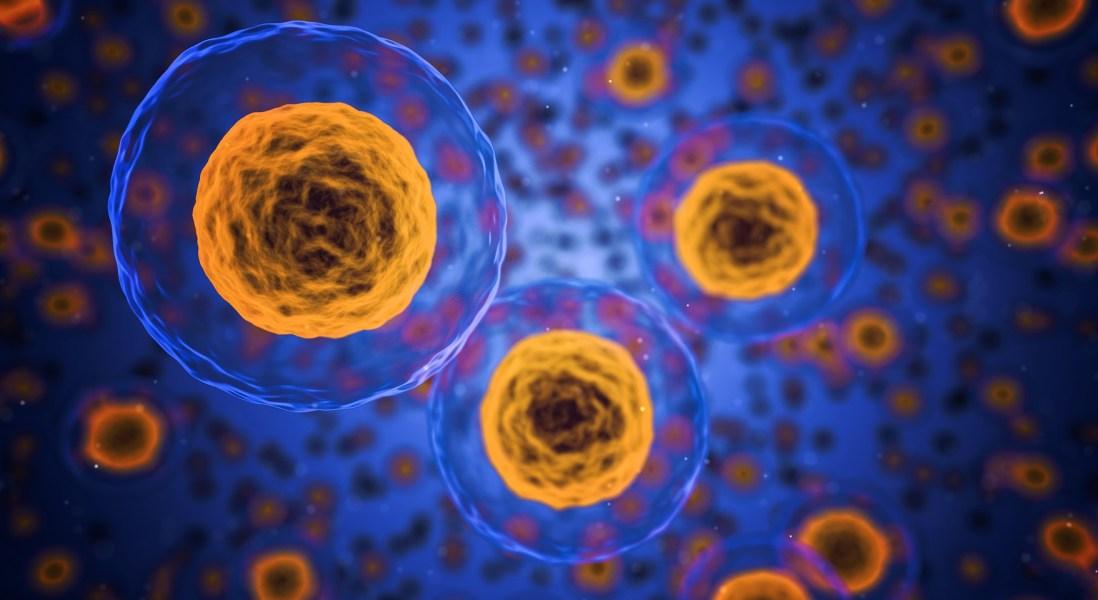 Merck's Keytruda Gets Clearance for Esophageal Cancer