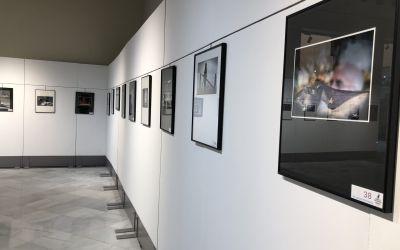 Exposicions i celebracions al voltant del dia del llibre copen l'agenda cultural de Xàtiva durant el mes d'abril