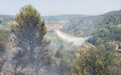 La ràpida actuació dels bombers permet controlar un incendi declarat ahir a Moixent