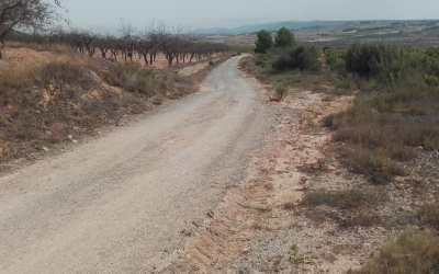 La Font de la Figuera inicia les obres del camí Juncarejos i la bassa contra incendis Cierro