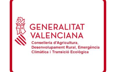 Xàtiva rep 44.000 euros pel canvi de lluminàries a les pedanies i a la carretera d'accés al Lluís Alcanyís