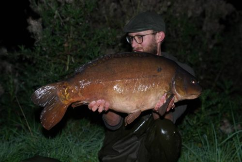 29lb linear manor farm ben wood complex-t