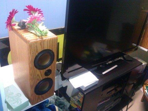 Overnight Sensations MTM Speakers