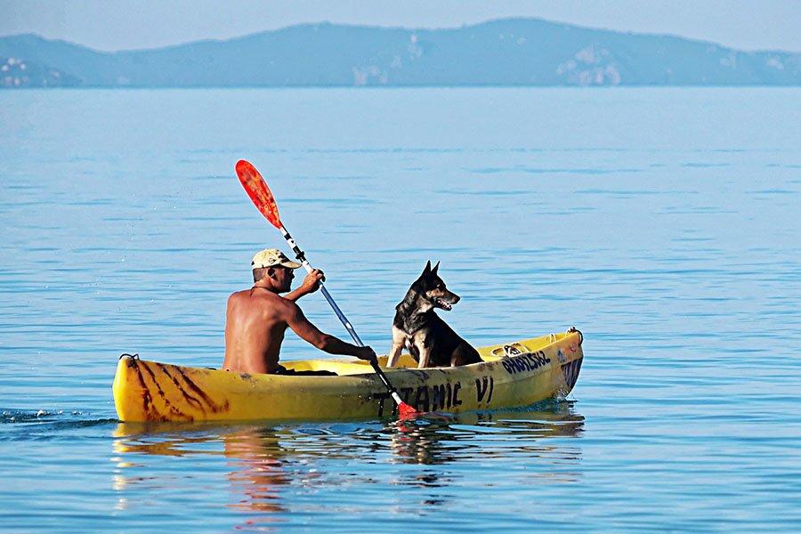 Kayaking Guide 4