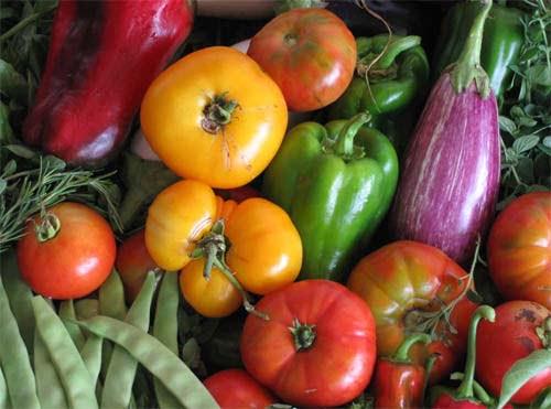 Orgânico e Hidropônico saiba Quais diferenças entre alimentos