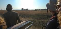 Vakantie_Zambia_140719_0399-71