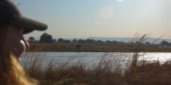 Vakantie_Zambia_140719_0403-72