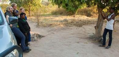 Vakantie_Zambia_200719_0588-136