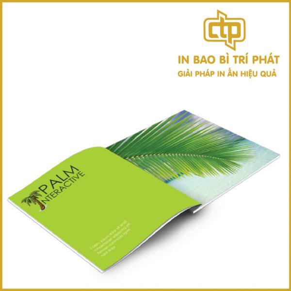 in catalogue giá rẻ và nghệ thuật phát huy quảng cáo