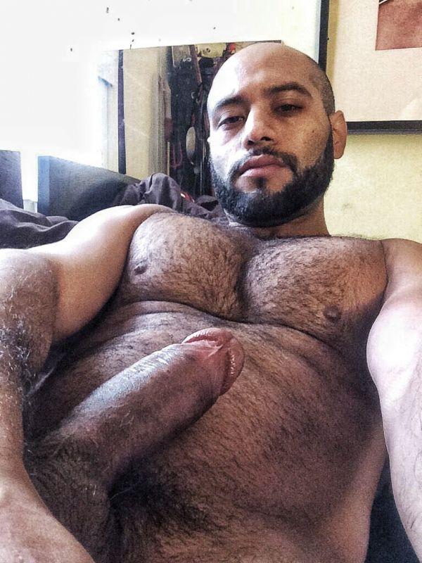 gay dilf sex tumblr