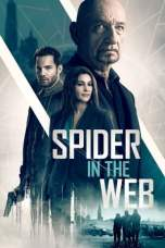 Spider in the Web (2019) BluRay 480p & 720p Full HD Movie Download