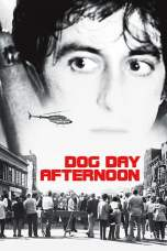 Dog Day Afternoon (1975) BluRay 480p & 720p Free HD Movie Download