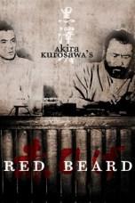 Red Beard (1965) BluRay 480p | 720p | 1080p Movie Download
