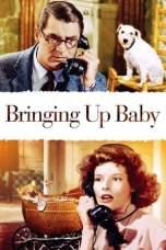Bringing Up Baby (1938) BluRay 480p & 720p Full Movie Download