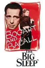 The Big Sleep (1946) BluRay 480p & 720p Full Movie Download