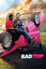 Bad Trip (2020) WEBRip 480p, 720p & 1080p Mkvking - Mkvking.com