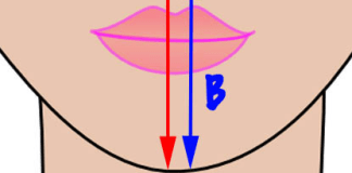 Déterminer la forme du visage grâce à sa morphologie