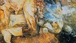 Ευρήματα σε μαζικό τάφο: Πτώμα μουσουλμάνου σε γονατιστή στάση στα τέσσερα με τα χέρια δεμένα πίσω από την πλάτη.