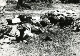 Εκτελεσθέντες επί Κατοχής-01 - Φ.Α.2800.02.00005-5