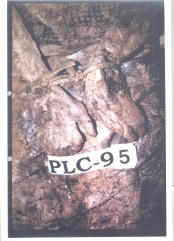 Exhibit P129-58 from Krstic trial - Srebrenica victim tied and then executed Bodies excavated from PLC mass grave