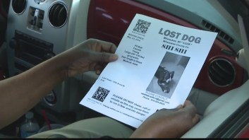 Spokeswoman Valetta Bradford goes door to door with fliers asking for the recovery of help dog Shi Shi for paralyzed son Xzavier Davis-Bilbo