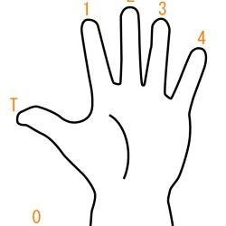 Bassを学ぶ~20『指番号』