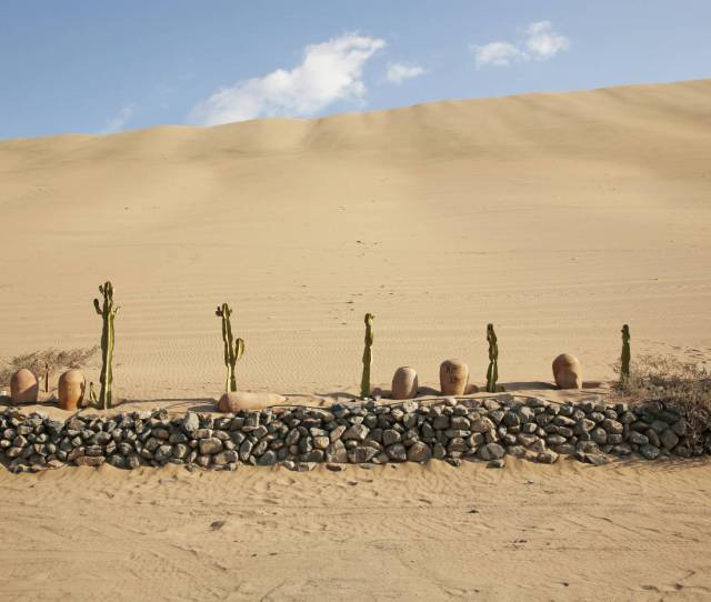 Discovering The Hidden Gardens Of Perus Oasis Huacachina
