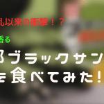 「応仁の乱以来の衝撃!!」抹茶が香る京都ブラックサンダー食べてみた!