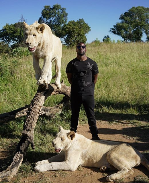 kevin hart south africa 2