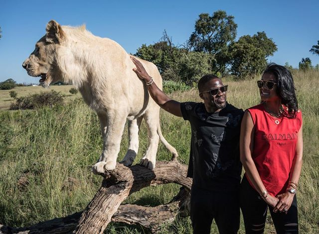 kevin hart south africa 3