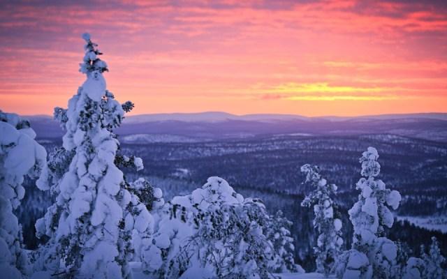 yaaz.az Laplandiyada yeni il