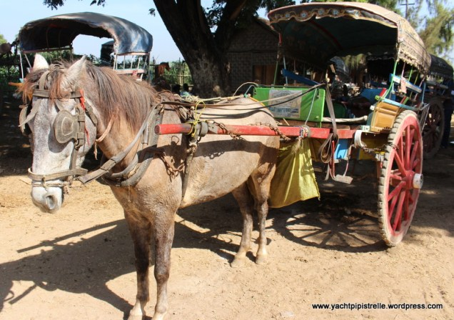 our transport in Inwa