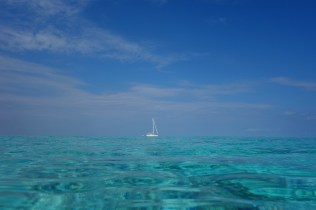 SAILING IN BLUE WATER
