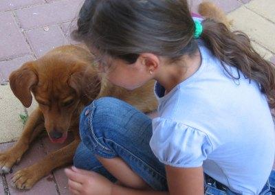 Ein Tier kann dein bester Freund sein