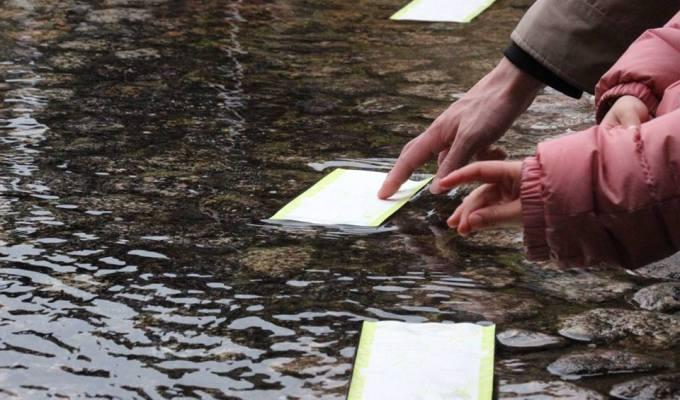 世界遺産 下鴨神社で水みくじ